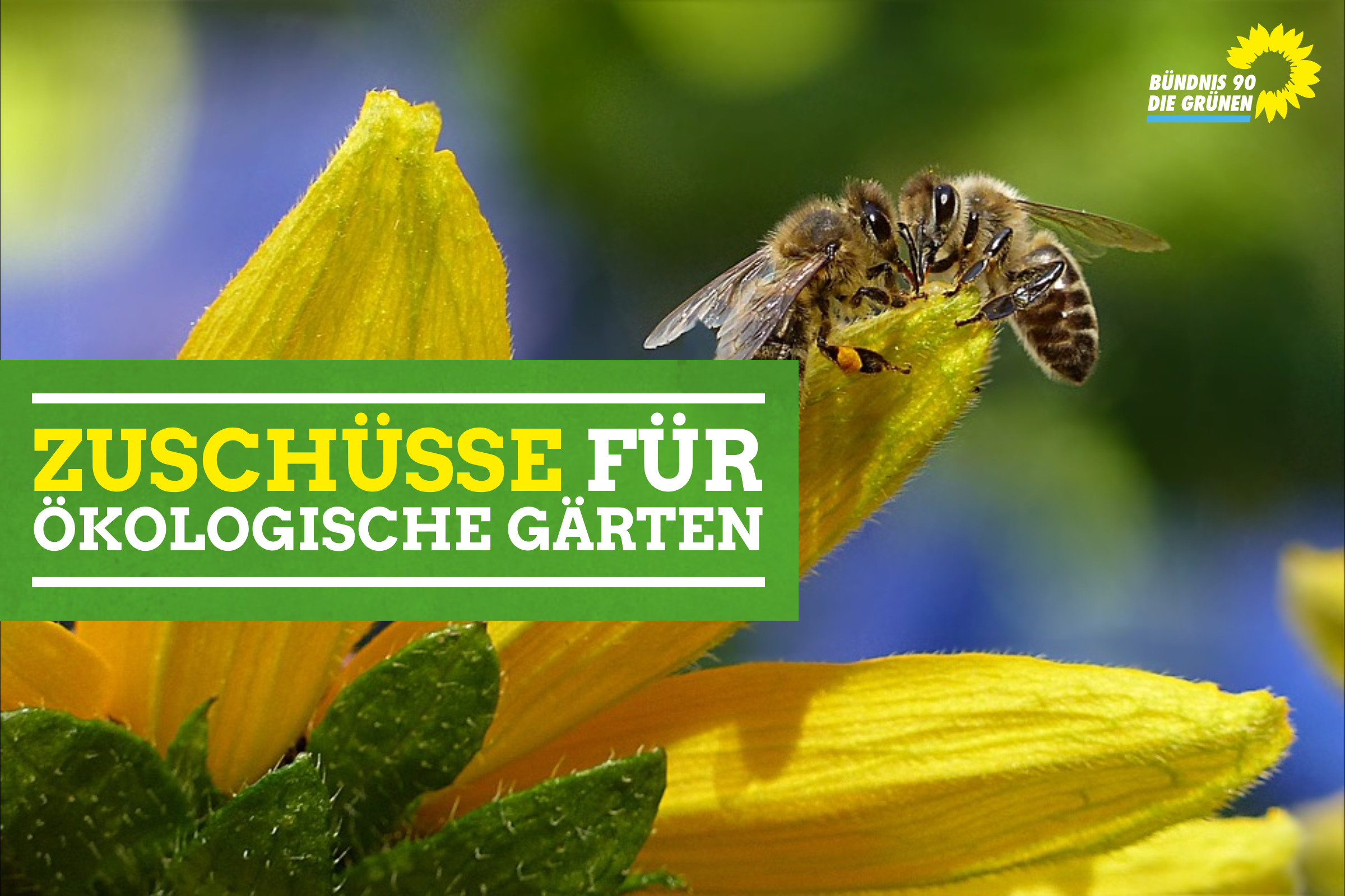 Zuschüsse für ökologische Gärten – Wie kann es gehen ???