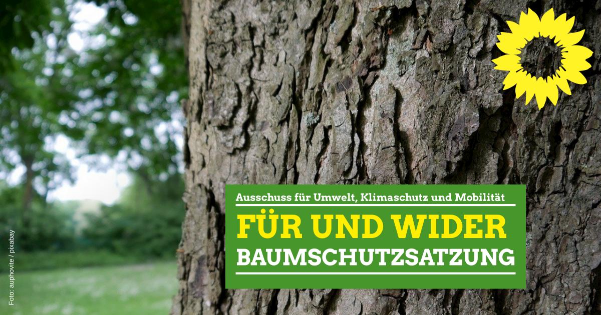 Für und Wider Baumschutzsatzung